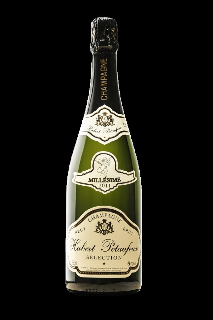 Champagne Potaufeux - Brut Millesime